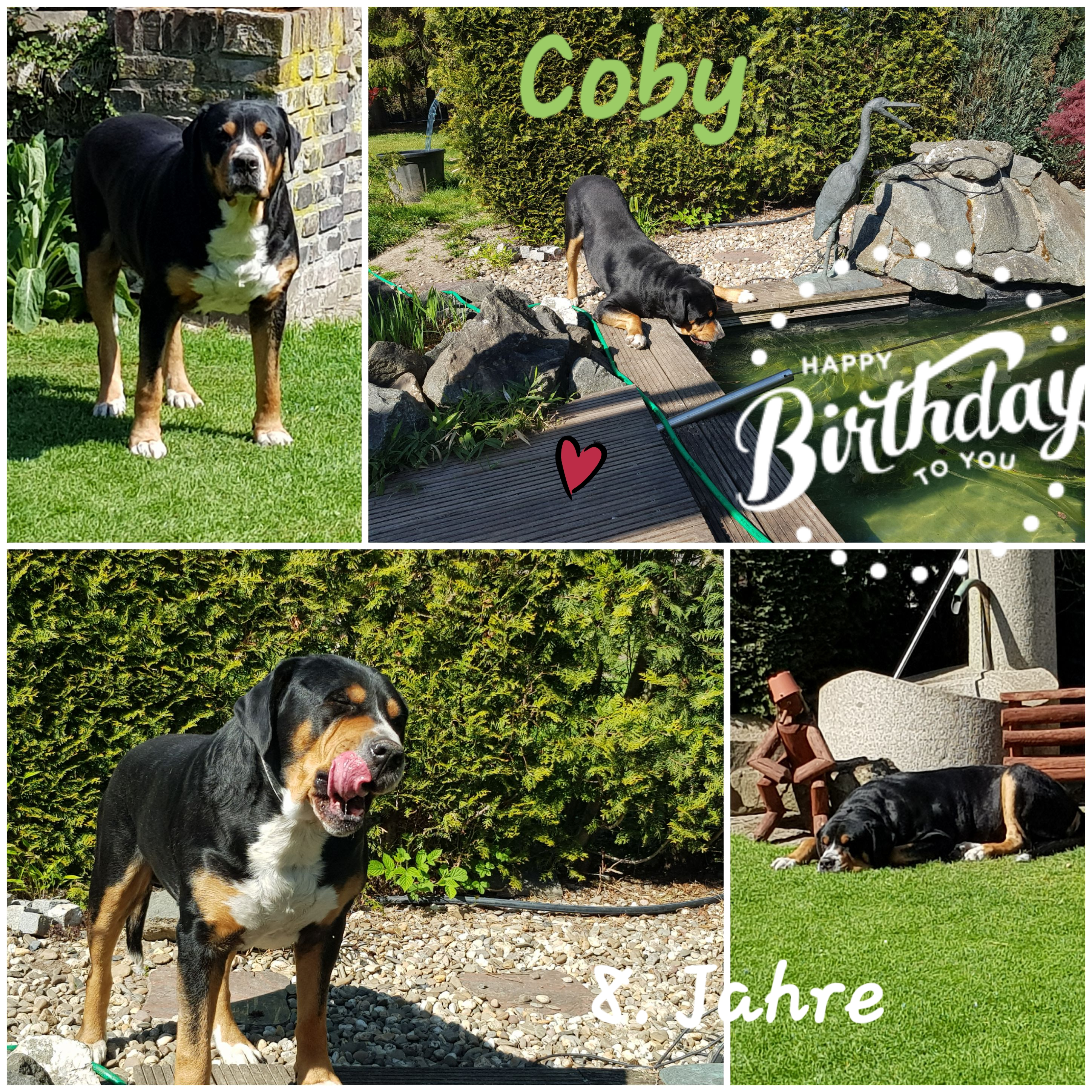 Coby 8Jahre